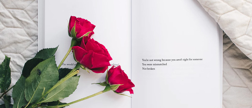 quà tặng valentine hoa hồng