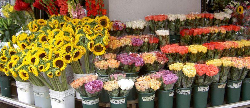kinh doanh hoa tươi vào mùa hè