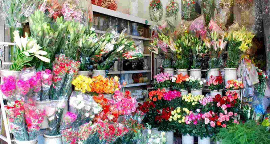mở cửa hàng hoa tươi