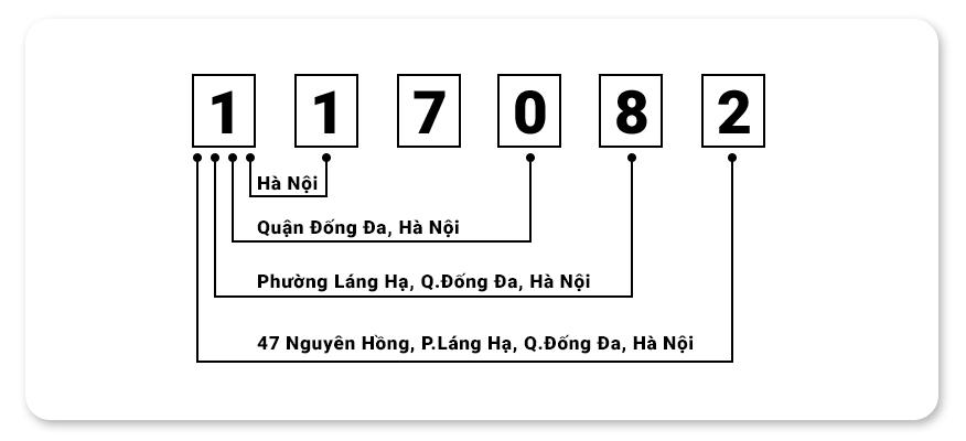 ví dụ về mã Zip Code