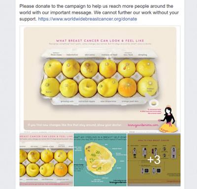 chiến dịch digital marketing của Worldwide Breast Cancer