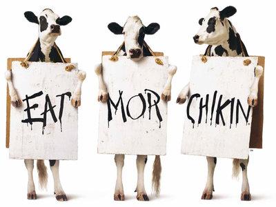 chiến dịch Marketing Chik fil a cows