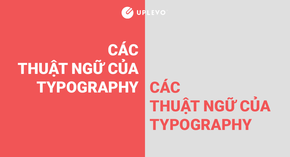 các thuật ngữ quan trọng của typography
