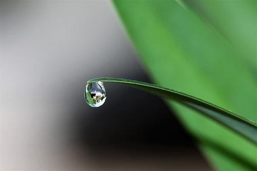 Hình Powerpoint giọt nước