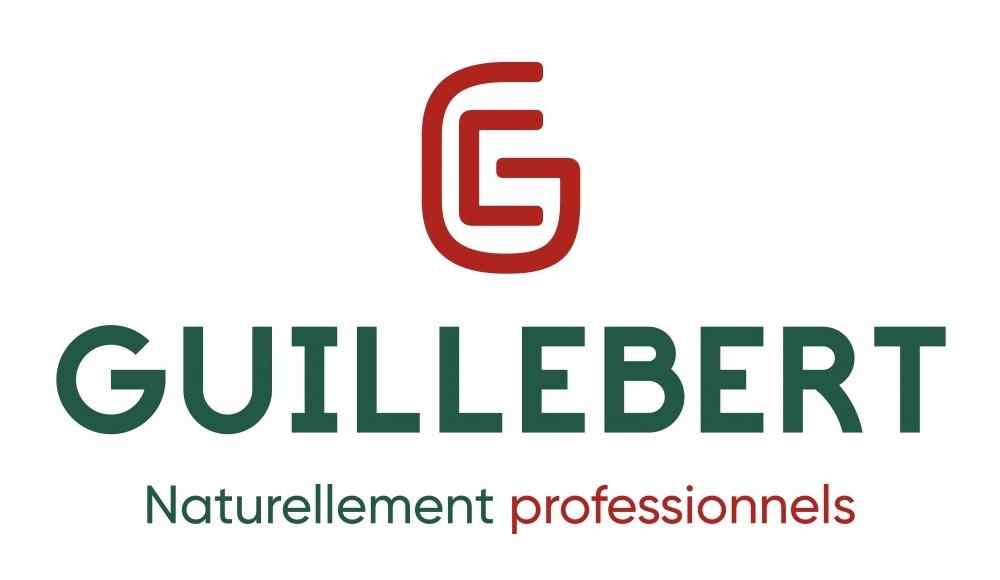 logo chữ g guillebert.