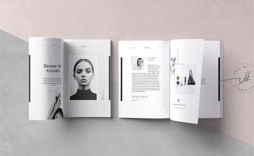 mẫu brochure đẹp 10