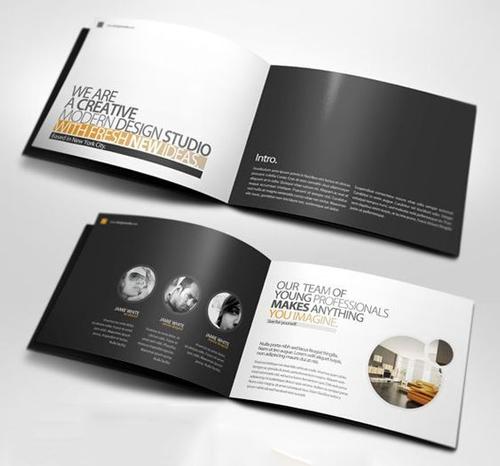 mẫu brochure đẹp 2
