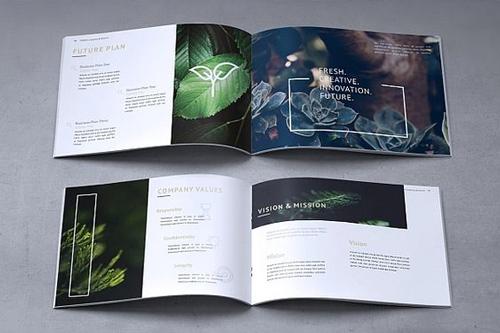 mẫu brochure đẹp 3