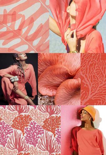 màu sắc của năm 2019 living coral 1