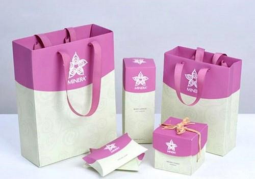 mẫu túi giấy đẹp 4