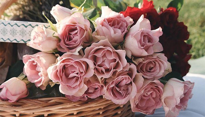 quà tặng 8/3 hoa và thiệp